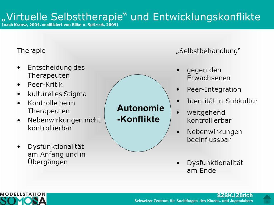 """""""Virtuelle Selbsttherapie und Entwicklungskonflikte (nach Krausz, 2004, modifiziert von Bilke u. Spitzcok, 2009)"""