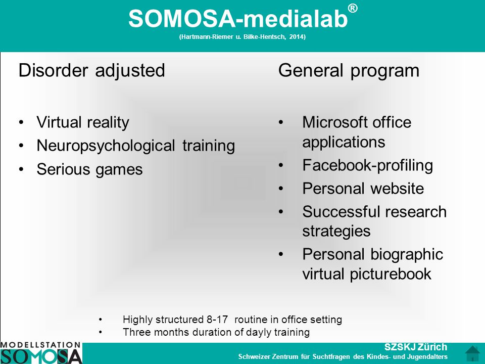 SOMOSA-medialab® (Hartmann-Riemer u. Bilke-Hentsch, 2014)