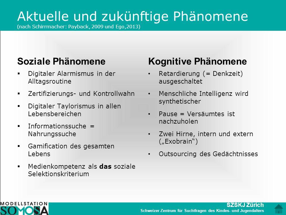 Aktuelle und zukünftige Phänomene (nach Schirrmacher: Payback, 2009 und Ego,2013)