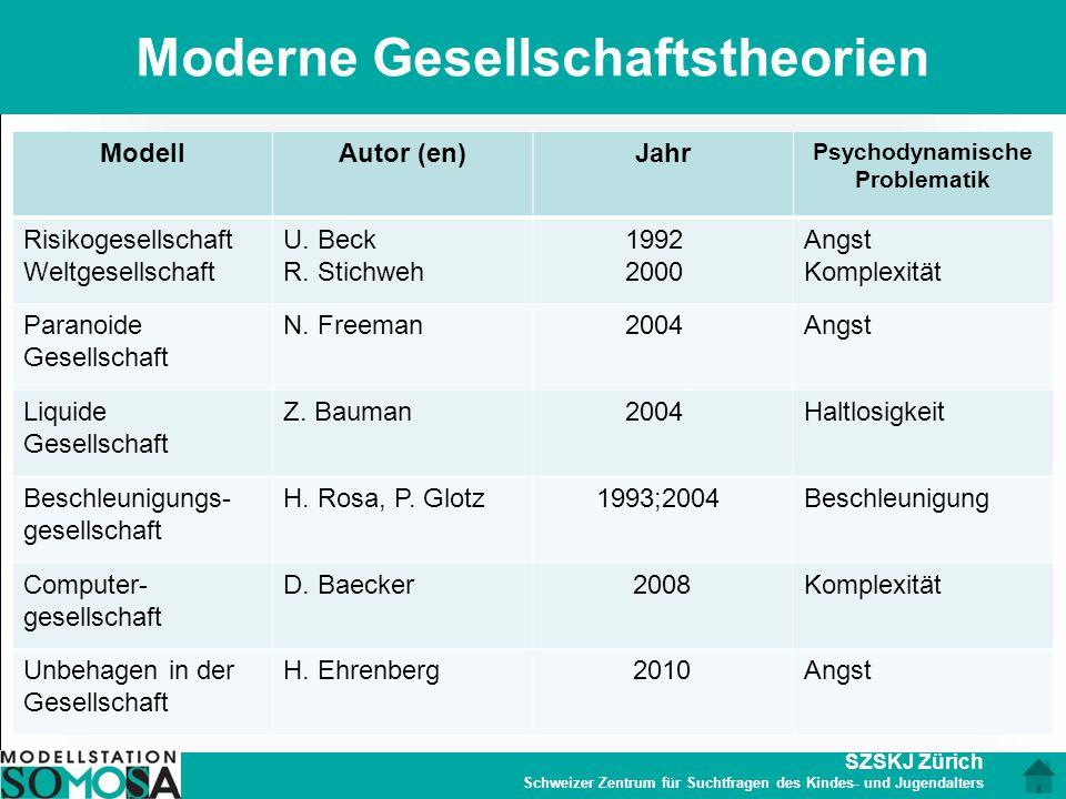 Moderne Gesellschaftstheorien