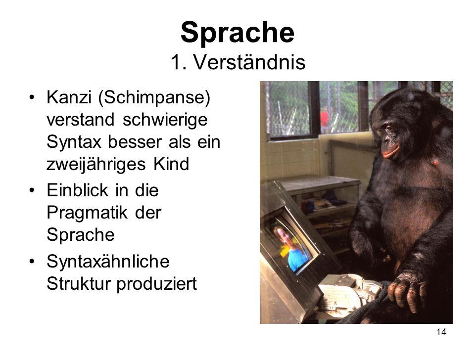 Sprache 1. VerständnisKanzi (Schimpanse) verstand schwierige Syntax besser als ein zweijähriges Kind.