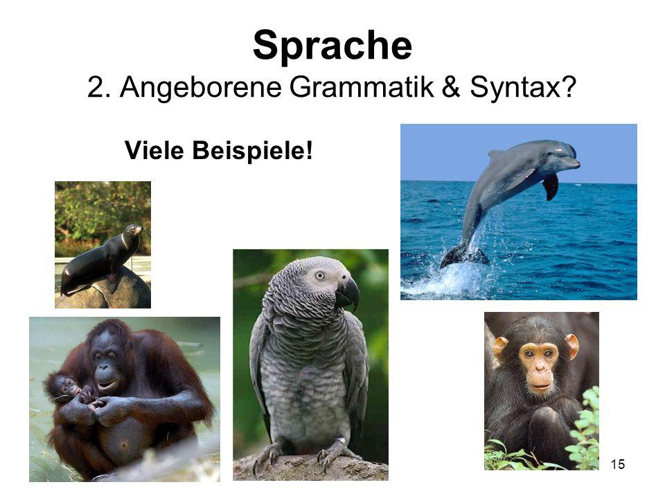 Sprache 2. Angeborene Grammatik & Syntax