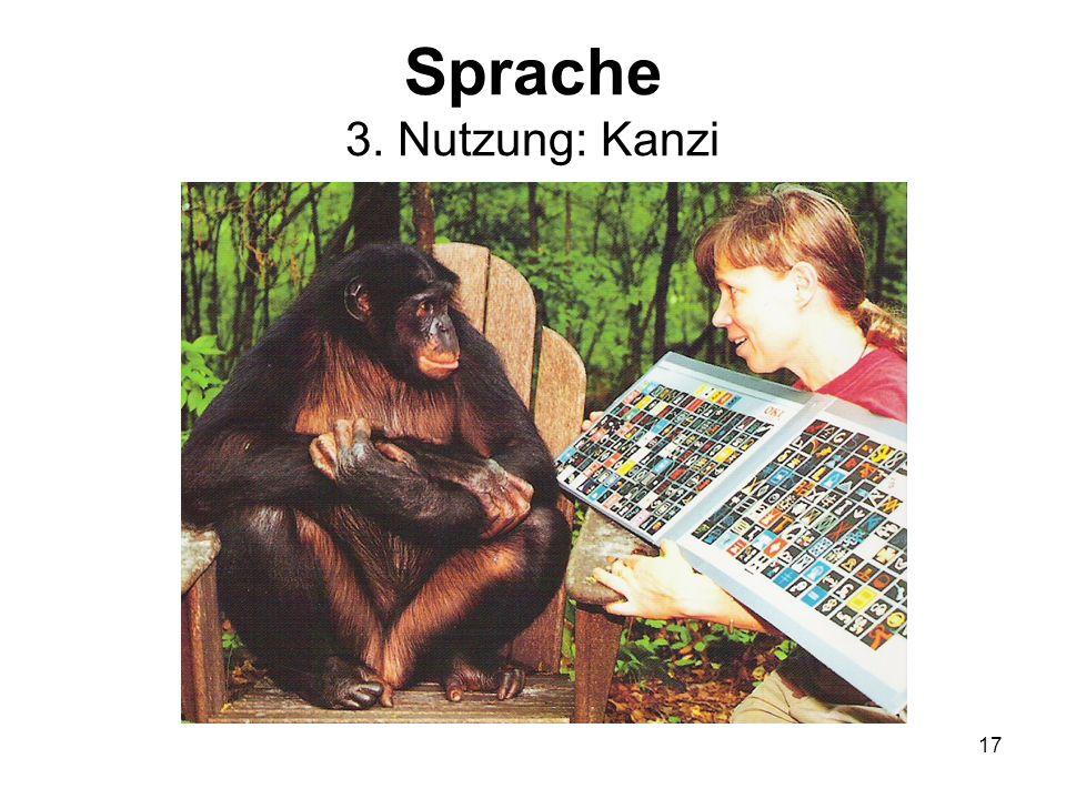 Sprache 3. Nutzung: Kanzi