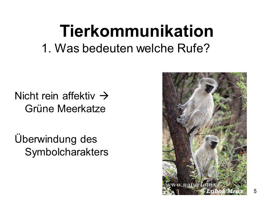 Tierkommunikation 1. Was bedeuten welche Rufe