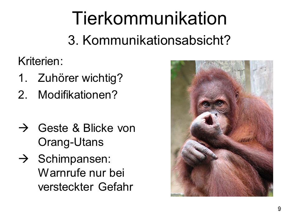 Tierkommunikation 3. Kommunikationsabsicht