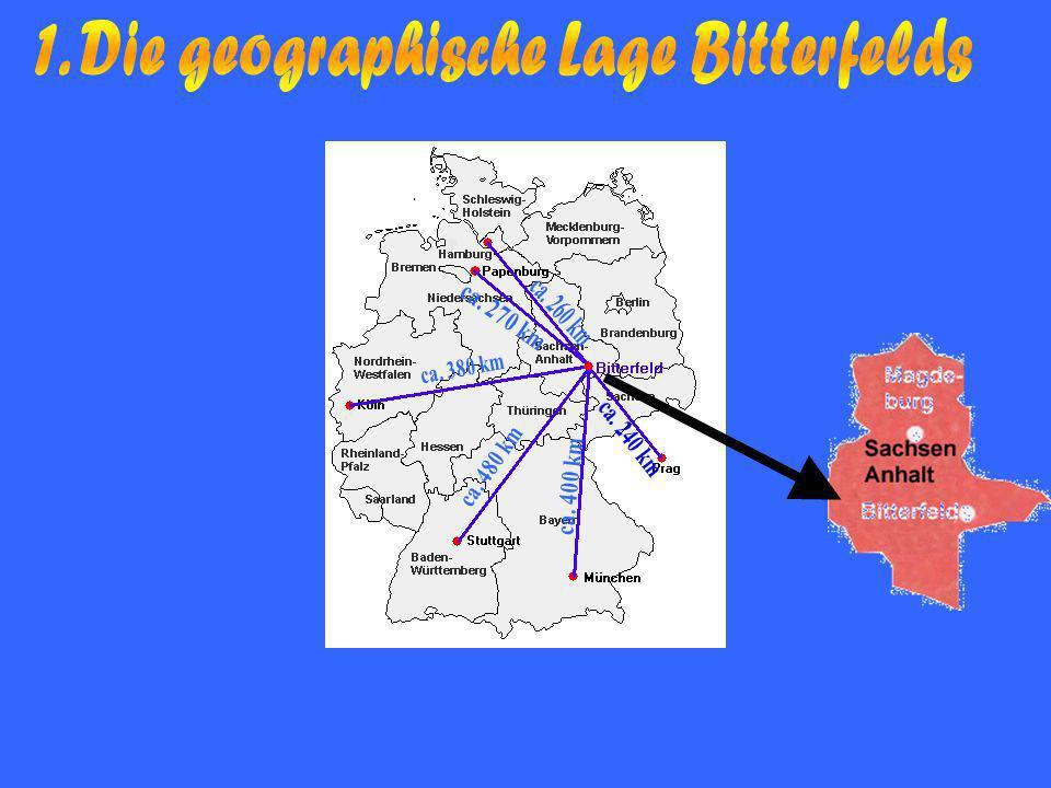 1. Die geographische Lage Bitterfelds