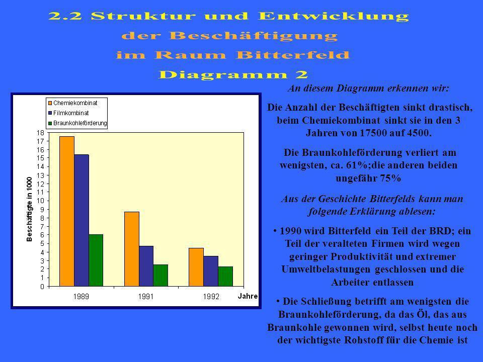 2.2 Struktur und Entwicklung der Beschäftigung im Raum Bitterfeld