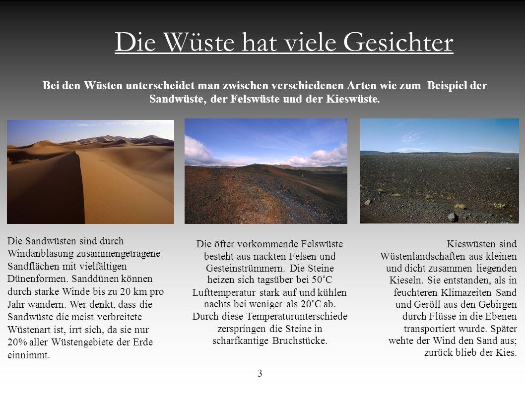 Die Wüste hat viele Gesichter