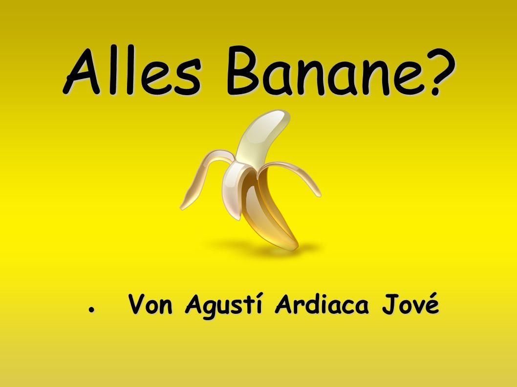 Von Agustí Ardiaca Jové