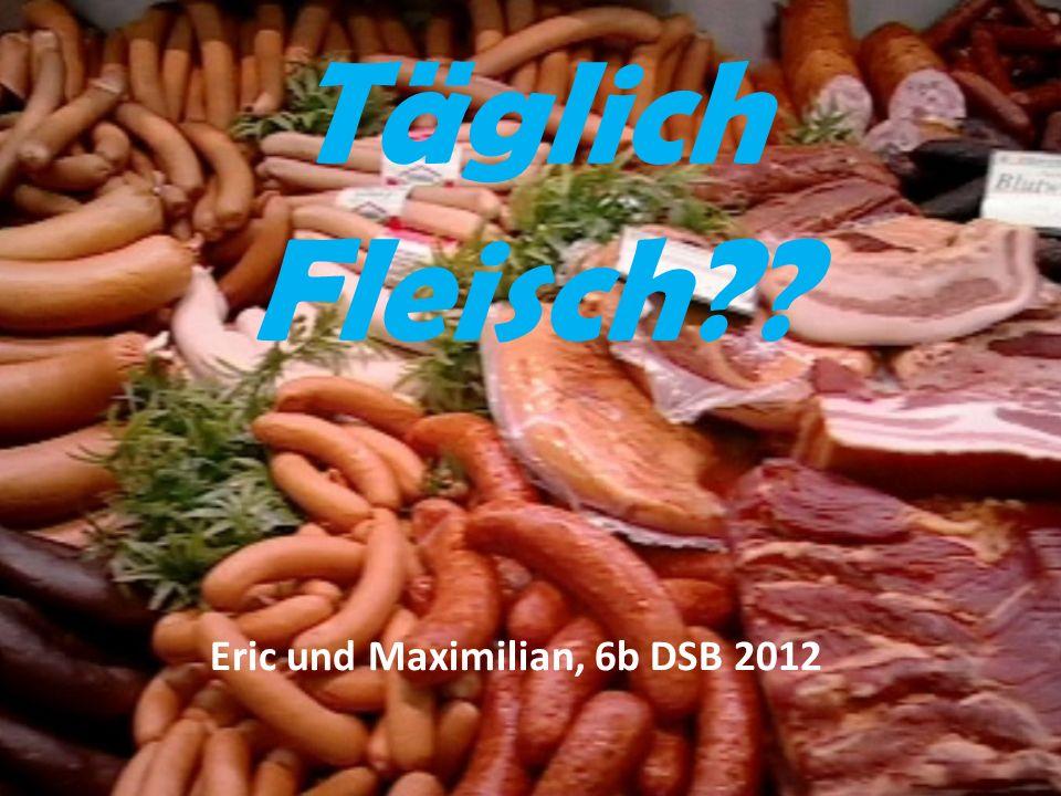 Täglich Fleisch Eric und Maximilian, 6b DSB 2012