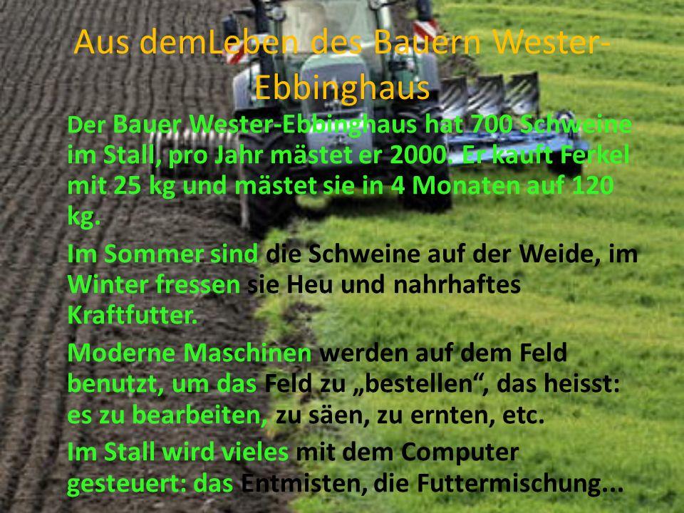 Aus demLeben des Bauern Wester-Ebbinghaus