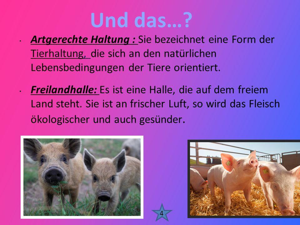 Und das… Artgerechte Haltung : Sie bezeichnet eine Form der Tierhaltung, die sich an den natürlichen Lebensbedingungen der Tiere orientiert.