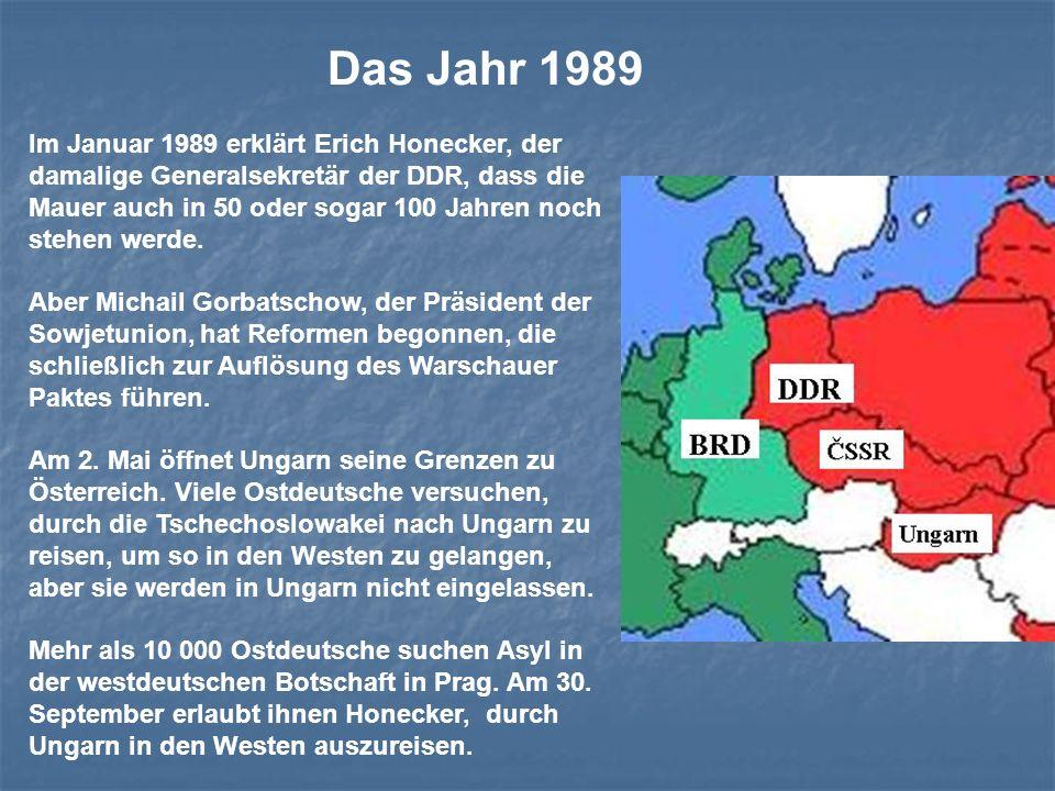 Das Jahr 1989