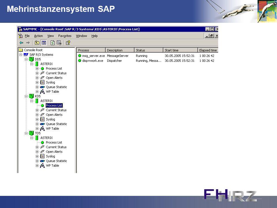 Mehrinstanzensystem SAP