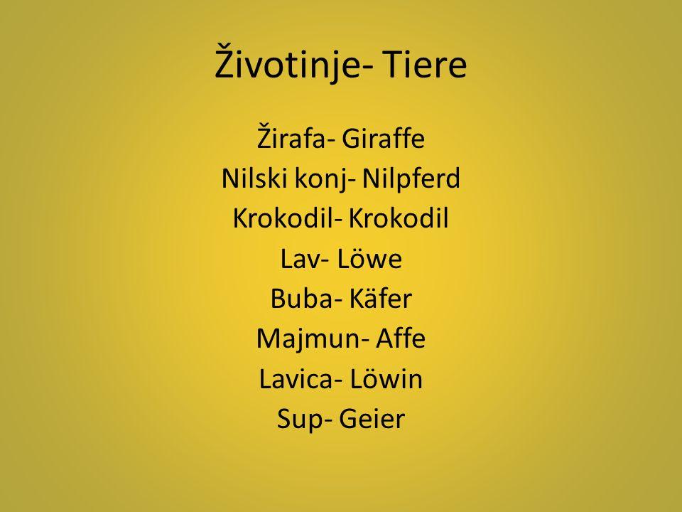Životinje- Tiere Žirafa- Giraffe Nilski konj- Nilpferd Krokodil- Krokodil Lav- Löwe Buba- Käfer Majmun- Affe Lavica- Löwin Sup- Geier