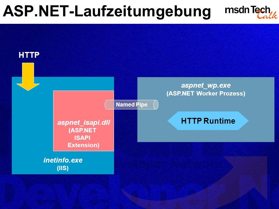 ASP.NET-Laufzeitumgebung