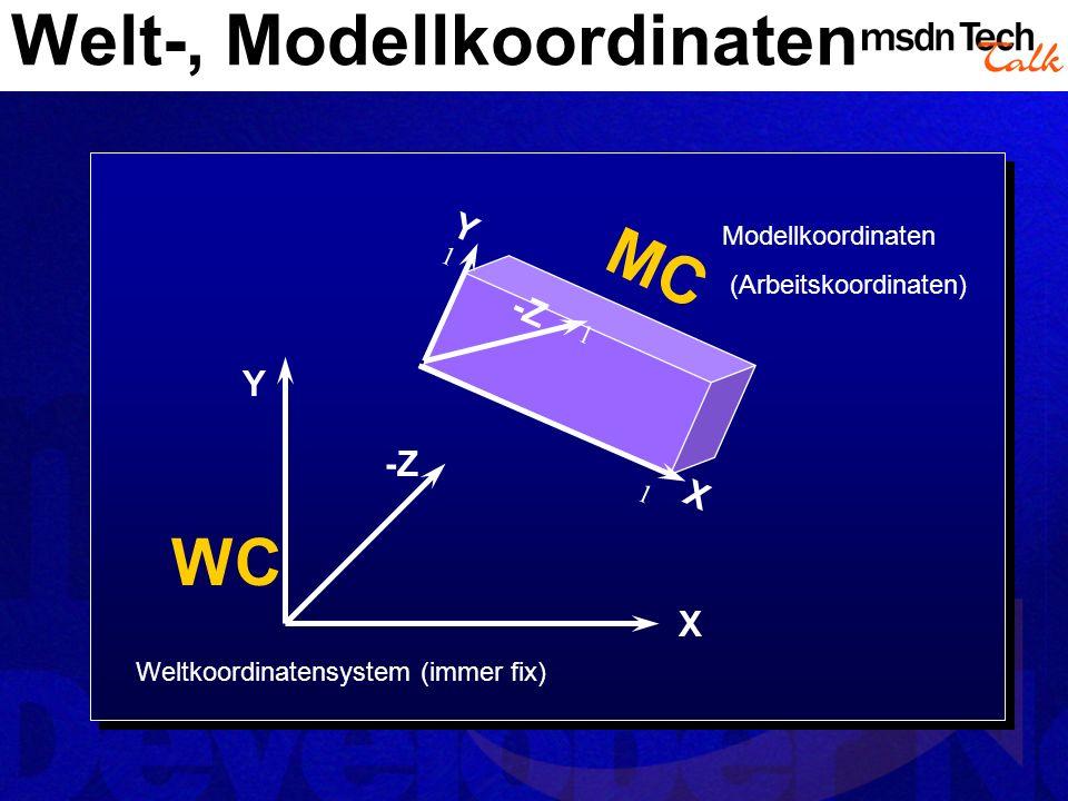 Welt-, Modellkoordinaten