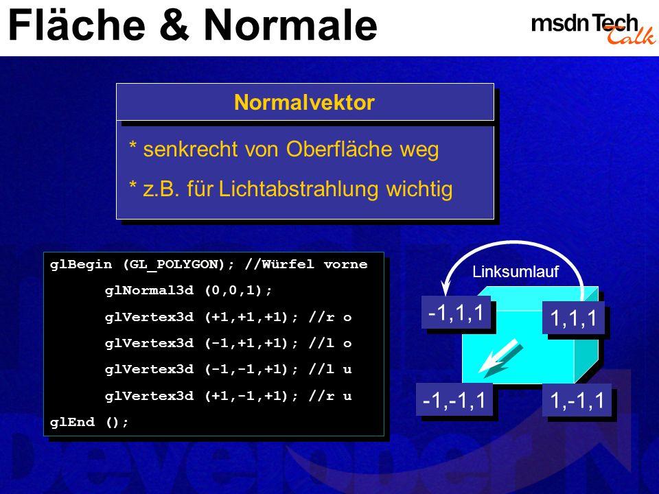Fläche & Normale Normalvektor * senkrecht von Oberfläche weg