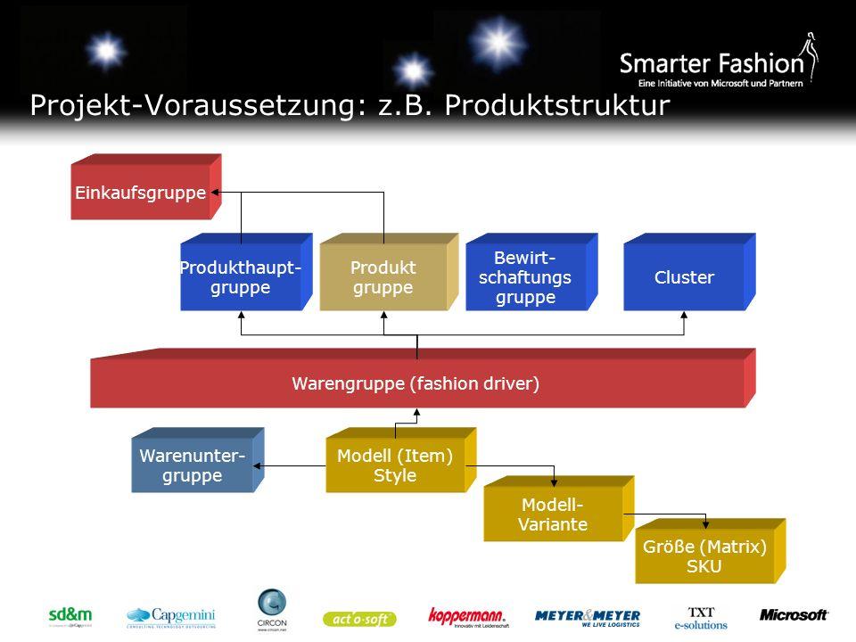 Projekt-Voraussetzung: z.B. Produktstruktur