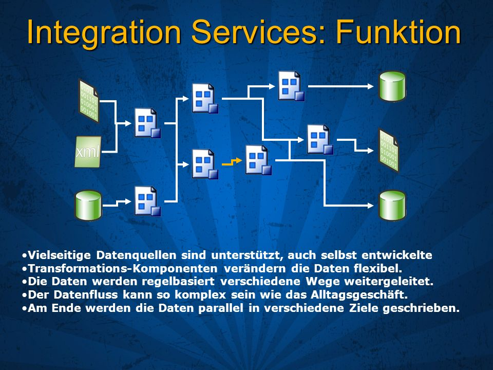 Integration Services: Funktion