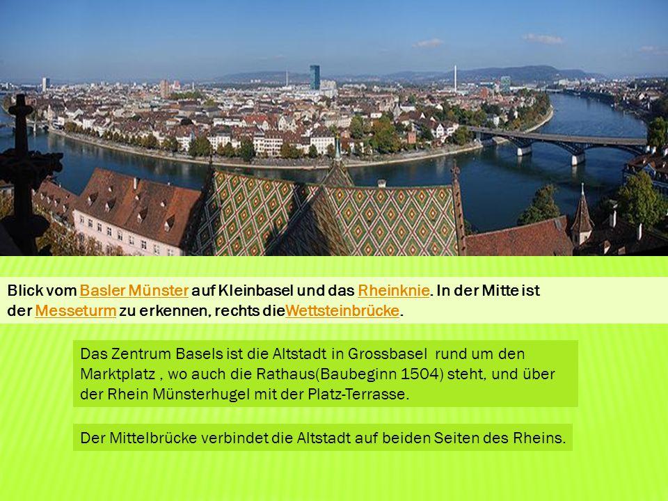 Blick vom Basler Münster auf Kleinbasel und das Rheinknie