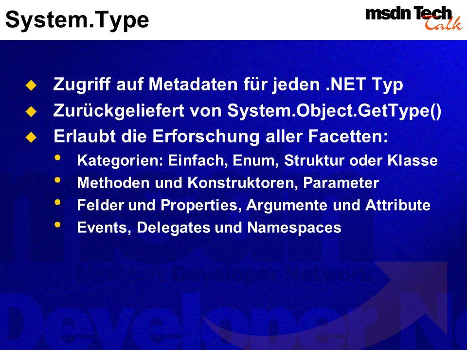 System.Type Zugriff auf Metadaten für jeden .NET Typ