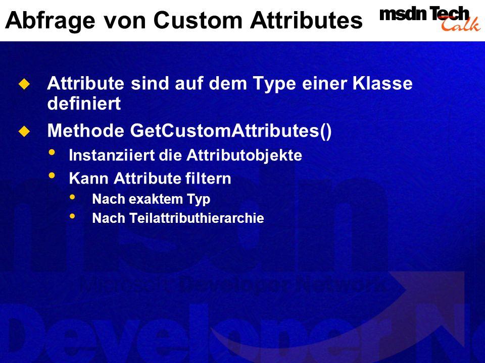 Abfrage von Custom Attributes