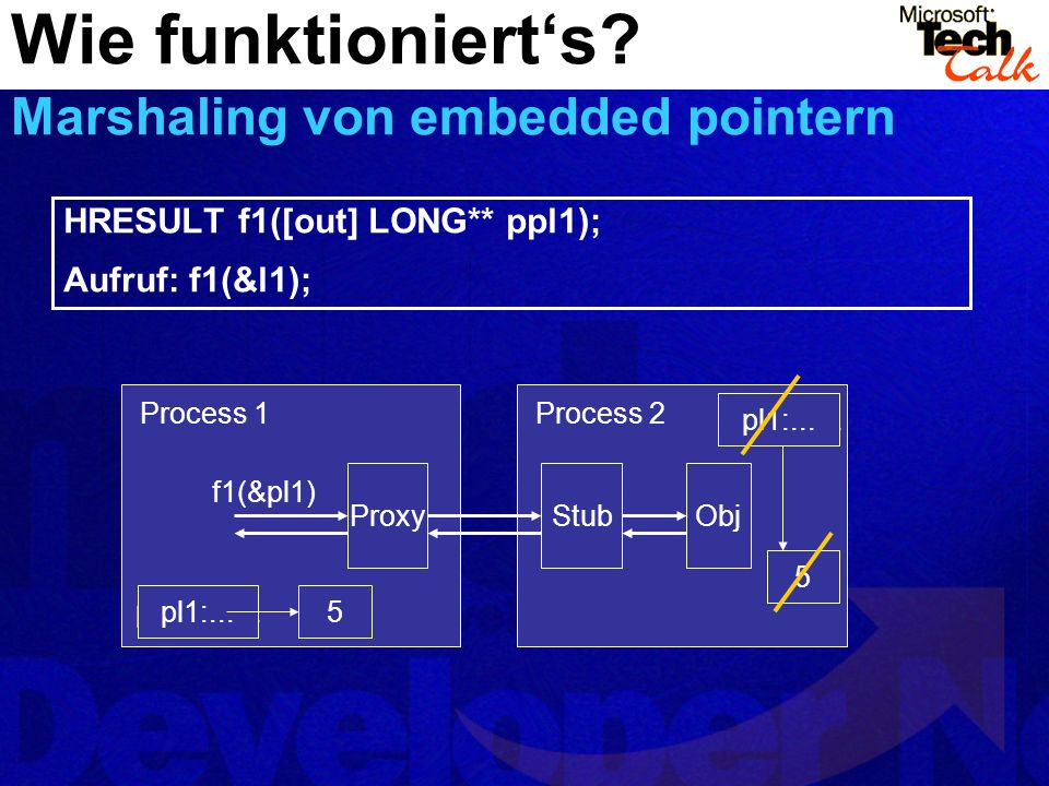 Wie funktioniert's Marshaling von embedded pointern