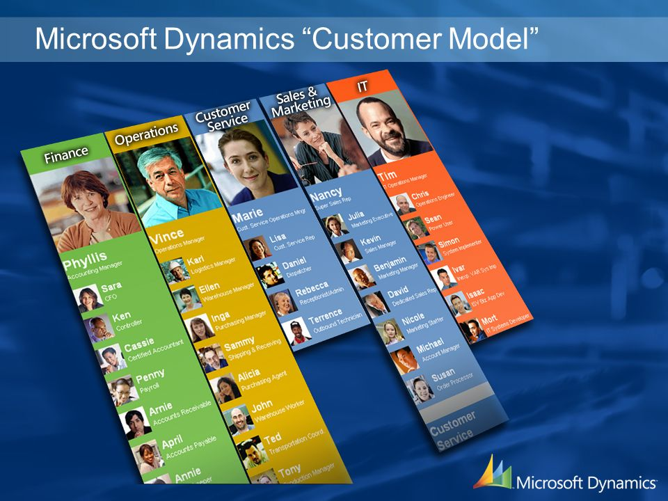 Microsoft Dynamics Customer Model