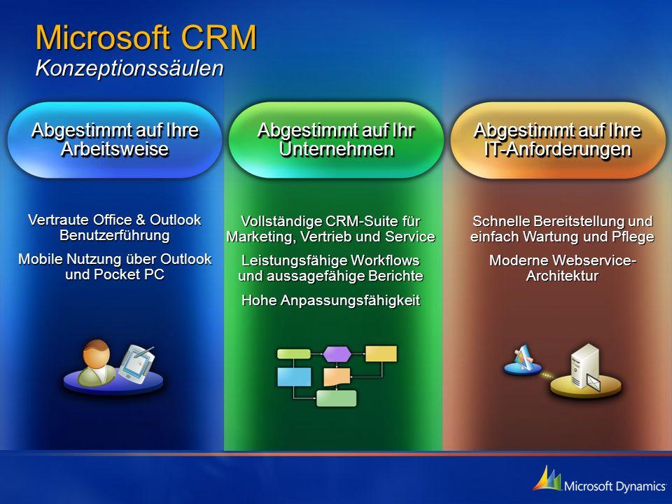 Microsoft CRM Konzeptionssäulen