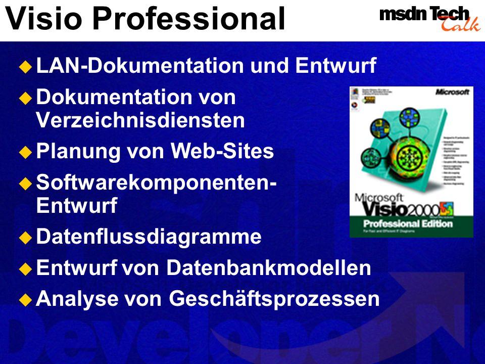 Visio Professional LAN-Dokumentation und Entwurf
