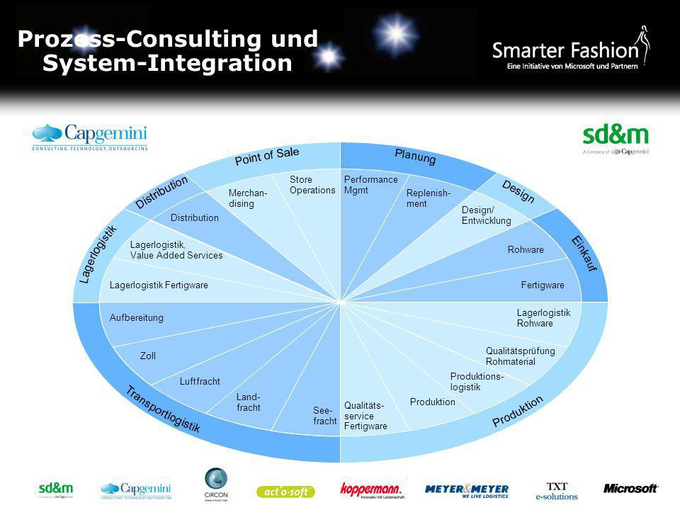 Prozess-Consulting und System-Integration
