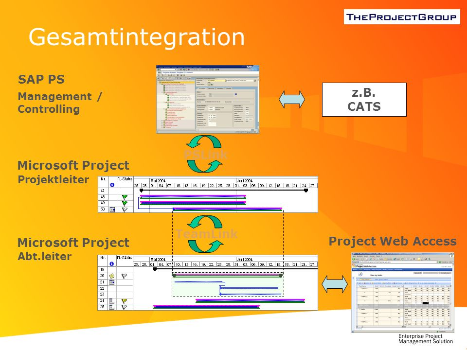 Gesamtintegration SAP PS z.B. CATS PSLink Microsoft Project TeamLink
