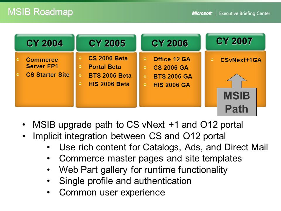MSIB Path MSIB Roadmap CY 2007 CY 2004 CY 2005 CY 2006