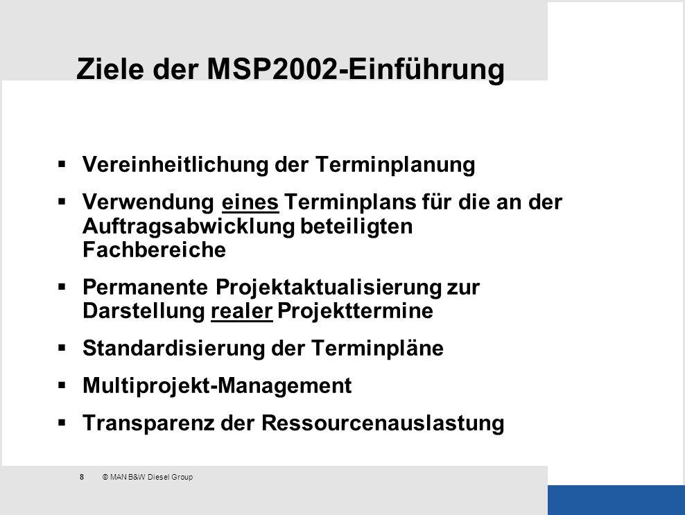 Ziele der MSP2002-Einführung