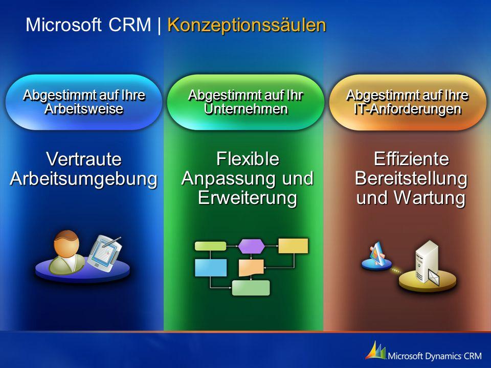 Microsoft CRM | Konzeptionssäulen