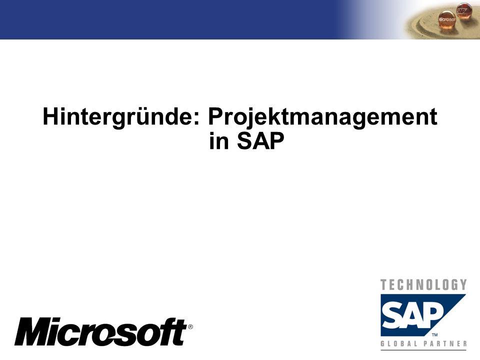 Hintergründe: Projektmanagement in SAP