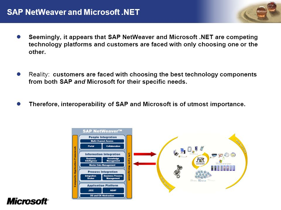 SAP NetWeaver and Microsoft .NET