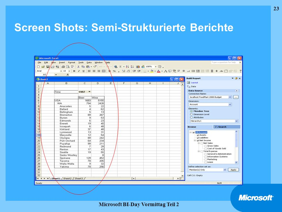 Screen Shots: Semi-Strukturierte Berichte
