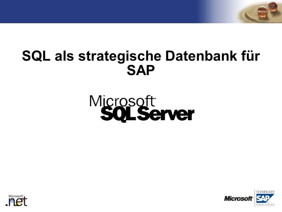 SQL als strategische Datenbank für SAP