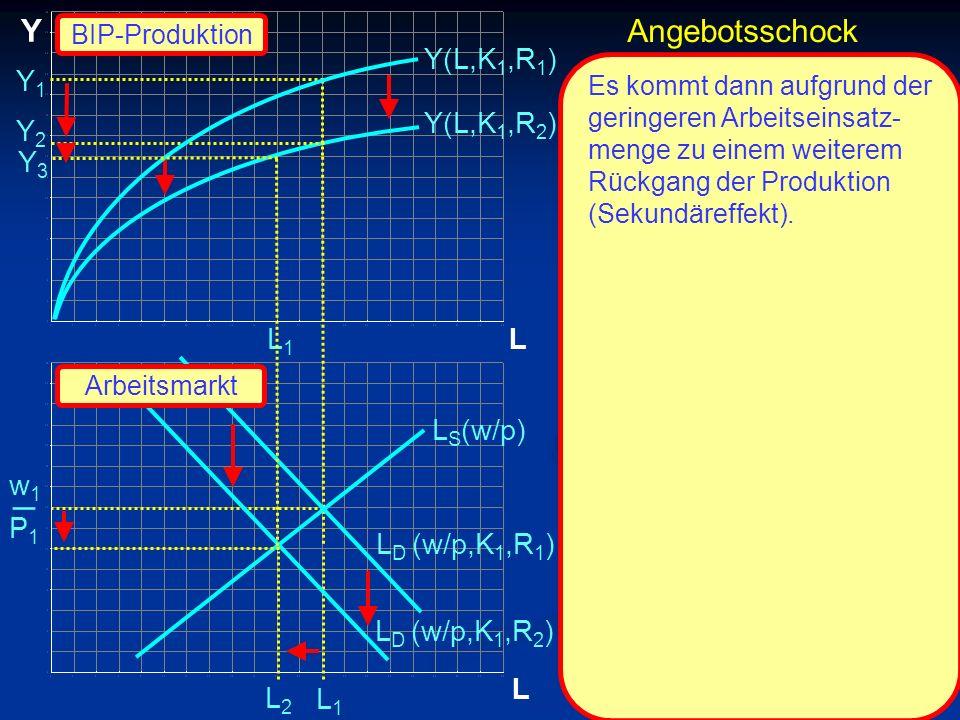 _ Y Angebotsschock Y(L,K1,R1) Y1 Y(L,K1,R2) Y2 Y3 L1 L LS(w/p) w1 P1
