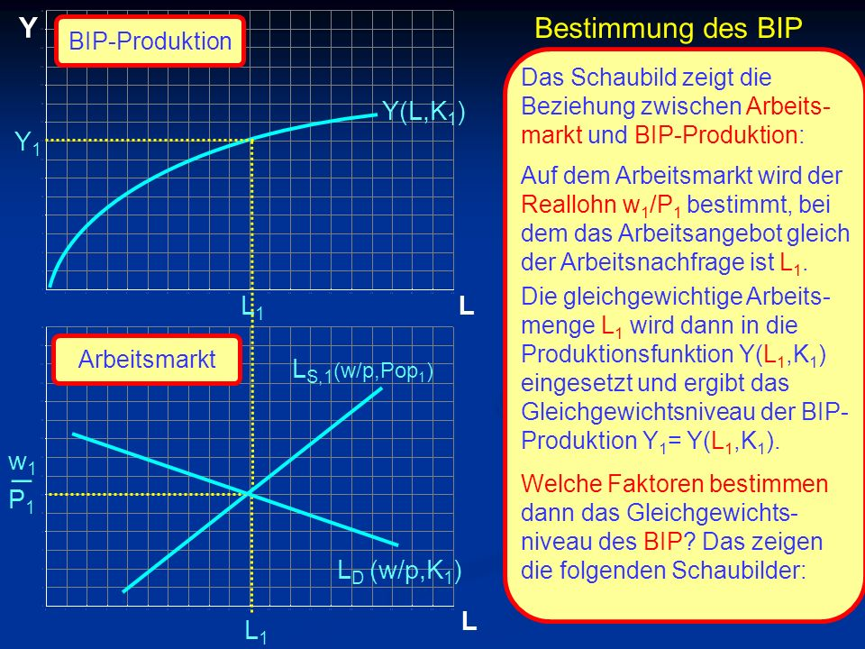 _ Y Bestimmung des BIP Y(L,K1) Y1 L1 L LS,1(w/p,Pop1) w1 P1