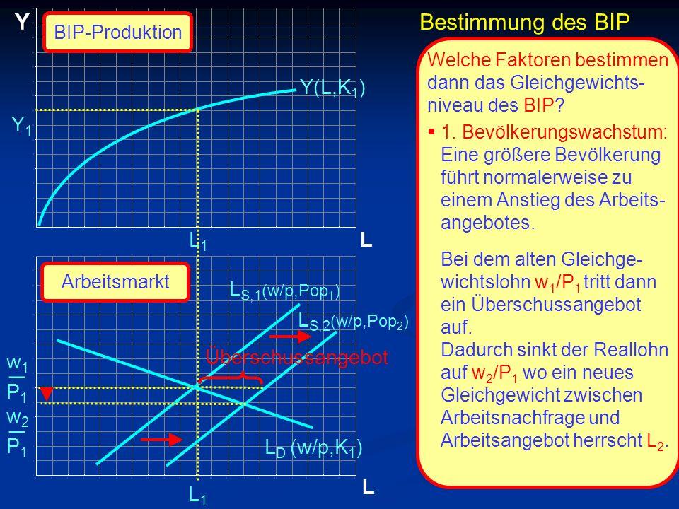 _ _ Y Bestimmung des BIP Y(L,K1) Y1 L1 L LS,1(w/p,Pop1) LS,2(w/p,Pop2)
