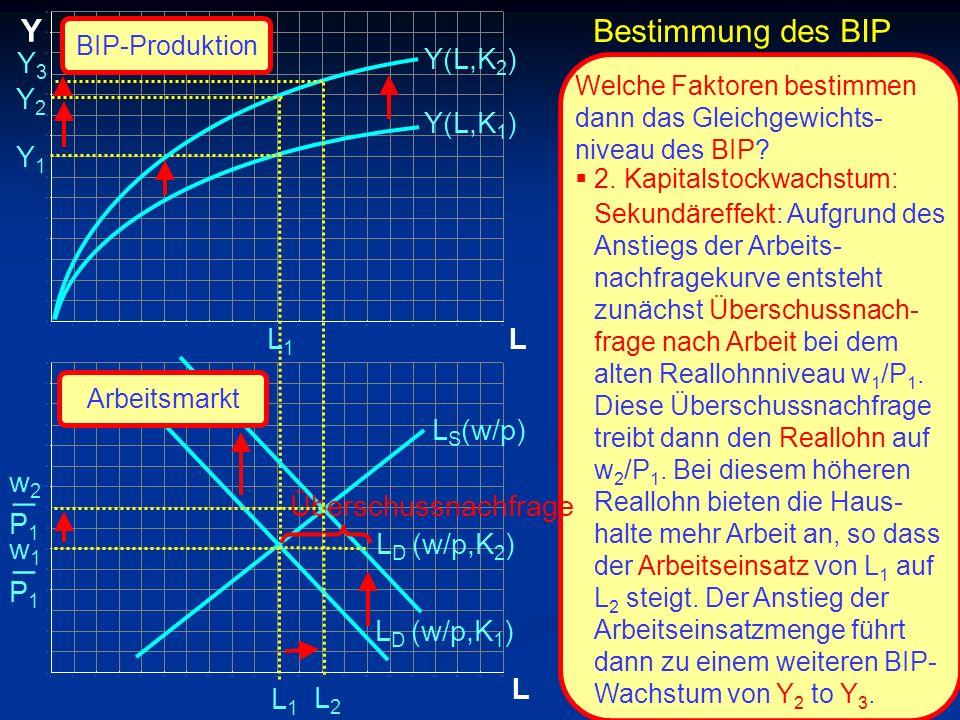 _ _ Y Bestimmung des BIP Y3 Y(L,K2) Y2 Y(L,K1) Y1 L1 L LS(w/p) w2