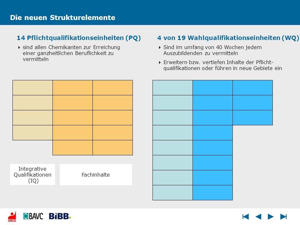 Integrative Qualifikationen (IQ)