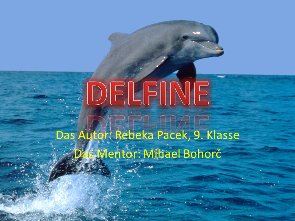 Das Autor: Rebeka Pacek, 9. Klasse Das Mentor: Mihael Bohorč