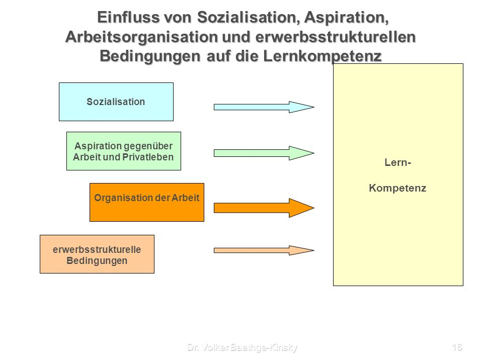 Organisation der Arbeit erwerbsstrukturelle Bedingungen