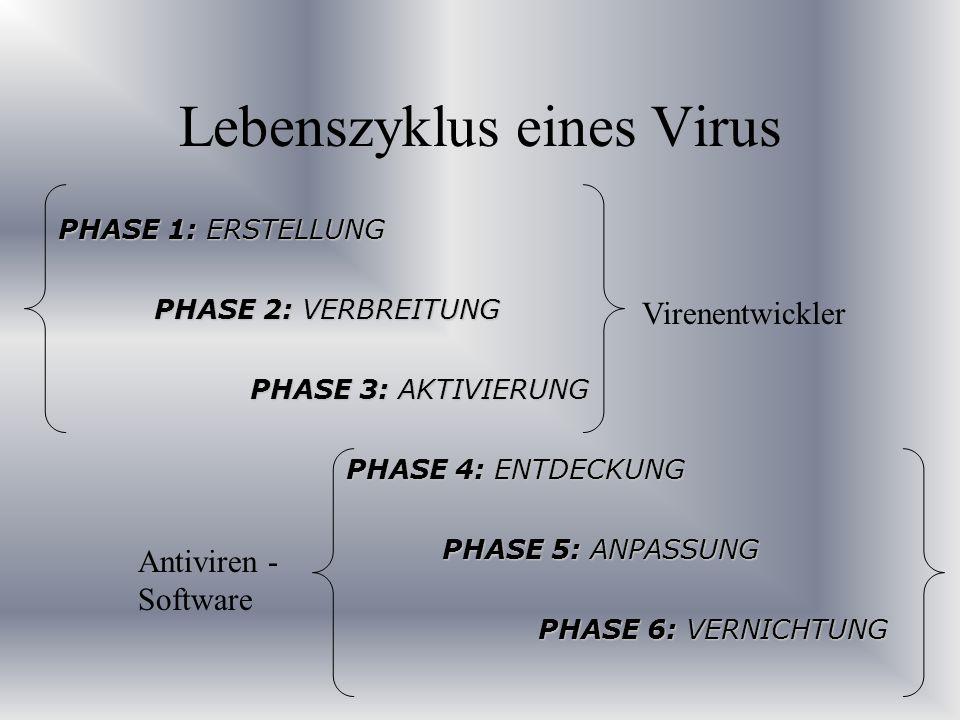 Lebenszyklus eines Virus