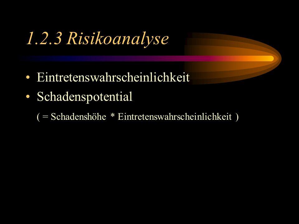 1.2.3 Risikoanalyse Eintretenswahrscheinlichkeit Schadenspotential