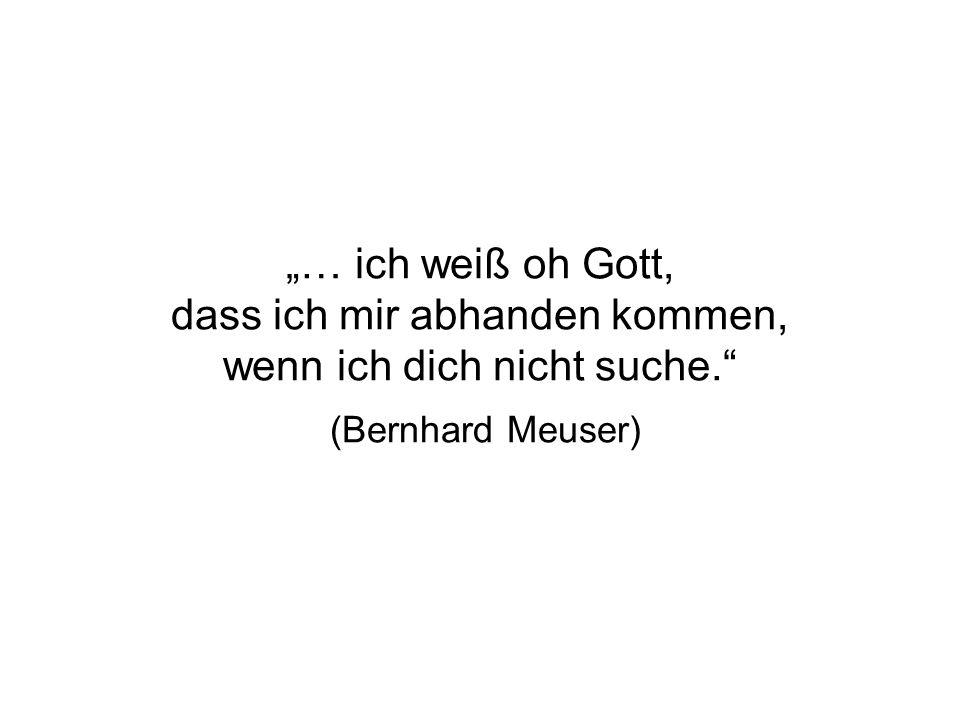 """""""… ich weiß oh Gott, dass ich mir abhanden kommen, wenn ich dich nicht suche. (Bernhard Meuser)"""